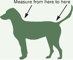 how_to_measure_your_dog.jpg