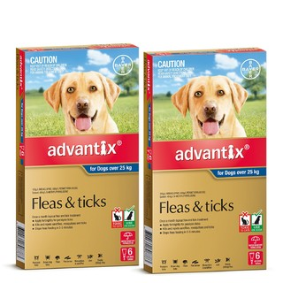 Advantix for Dogs Over 25 kg (Blue)[Size:12 Pack]