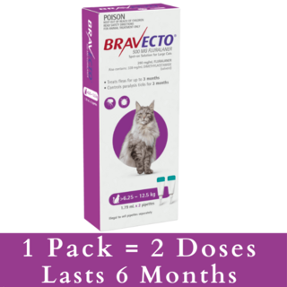 Bravecto Spot on for Cats Purple 6.25 - 12.5kg