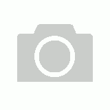 Nylon Padded Lead 2.5cm x 120cm - Blue