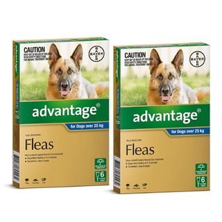 Advantage for Dogs Over 25kg (Blue)[Size:12 Pack]