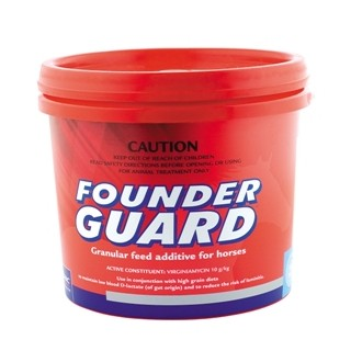 Founder Guard