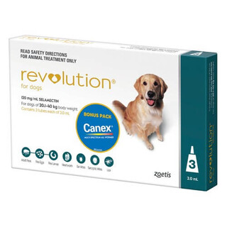 Revolution for Large Dogs 20.1-40kg (Teal)