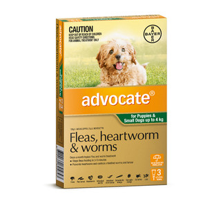 Advocate for Puppies and Small Dogs Up to 4kg (Green)