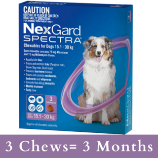 NexGard SPECTRA for Dogs 15.1 - 30kg (PURPLE)